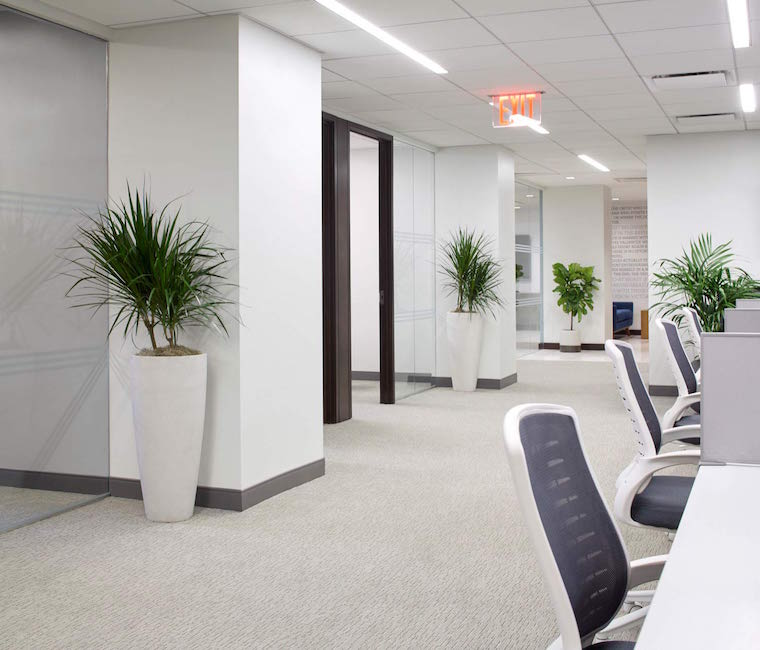 An innovative office design for blackstone financial for Professional building designer