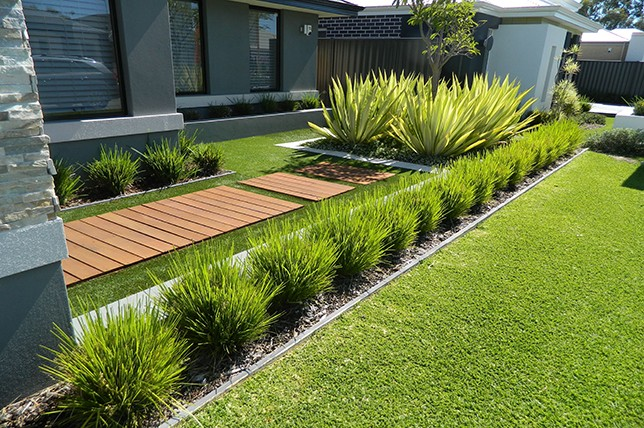 modern easy garden plants landscaping ideas