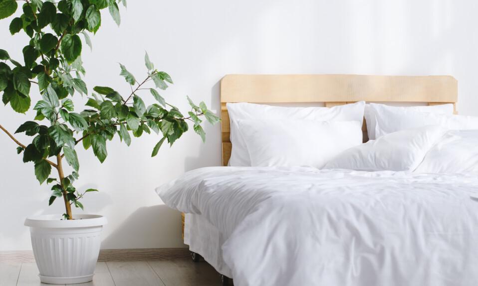 luxurious bedding brands