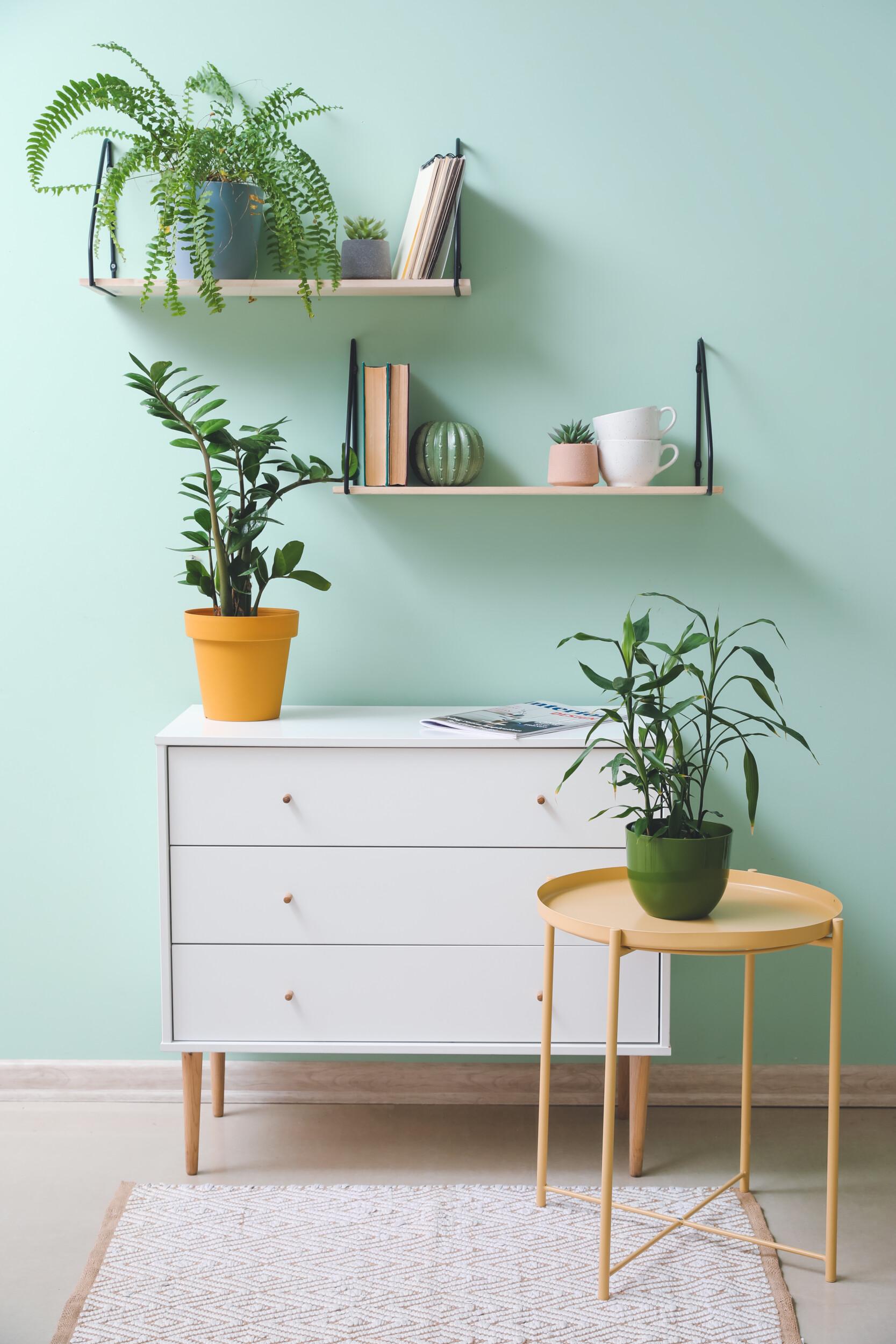 mint green wall interior