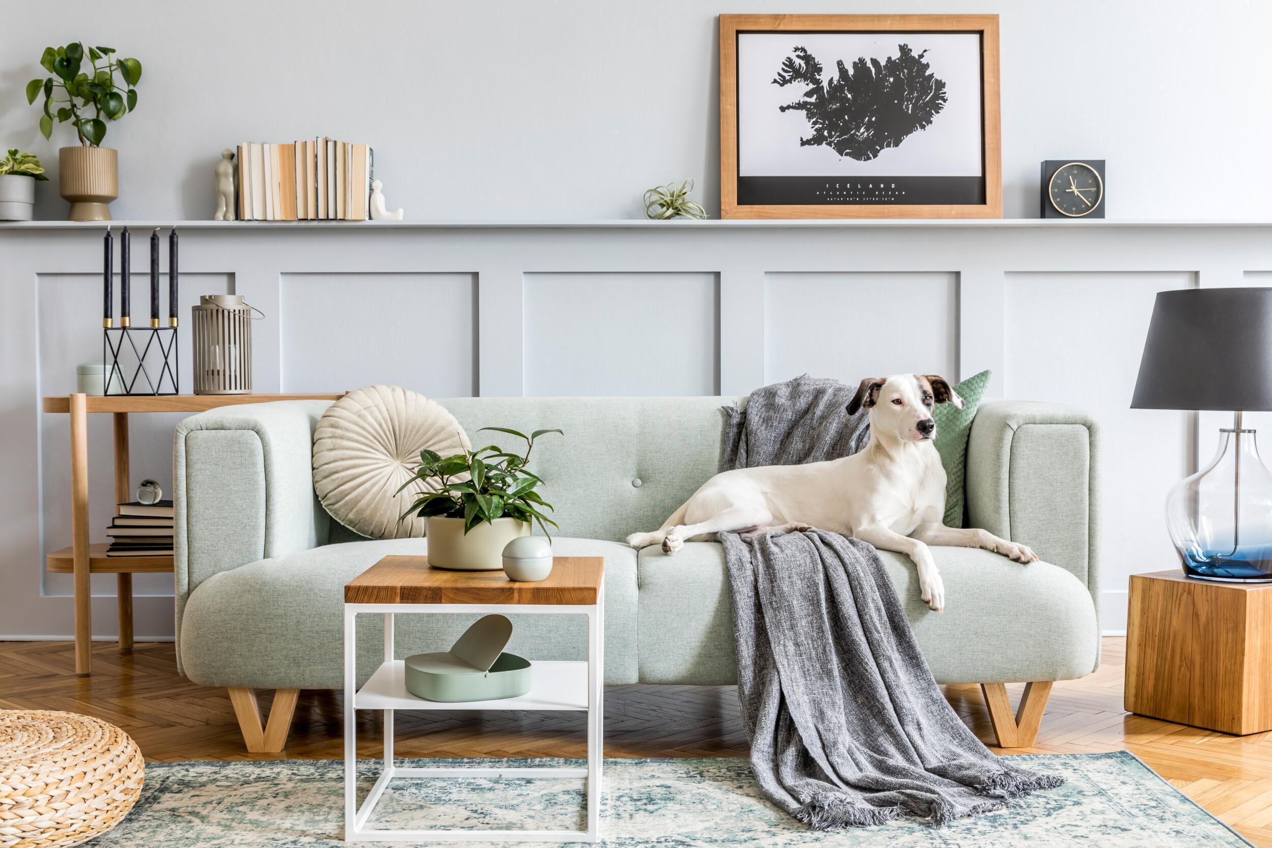 modern mint living room