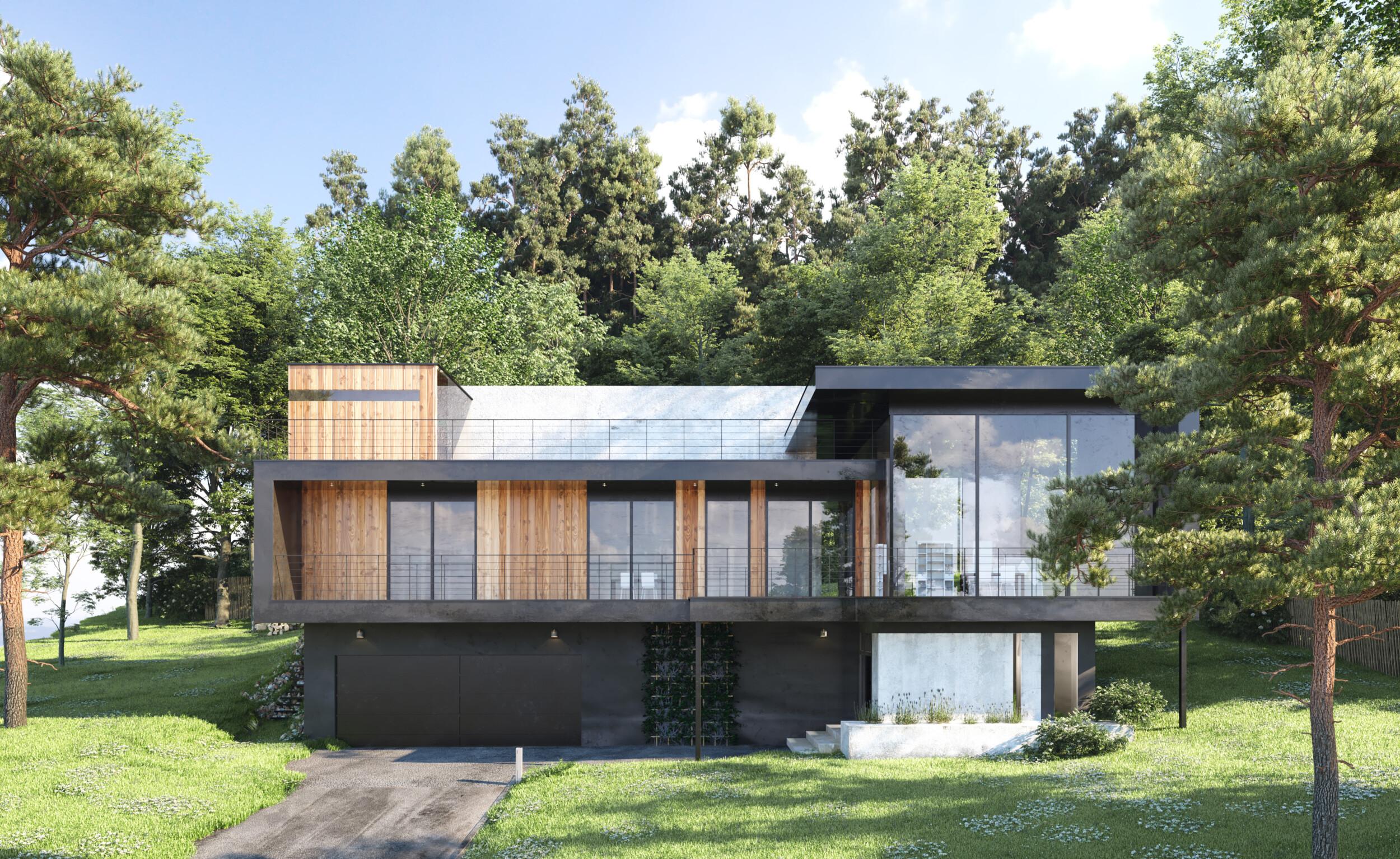 modern wooden black house