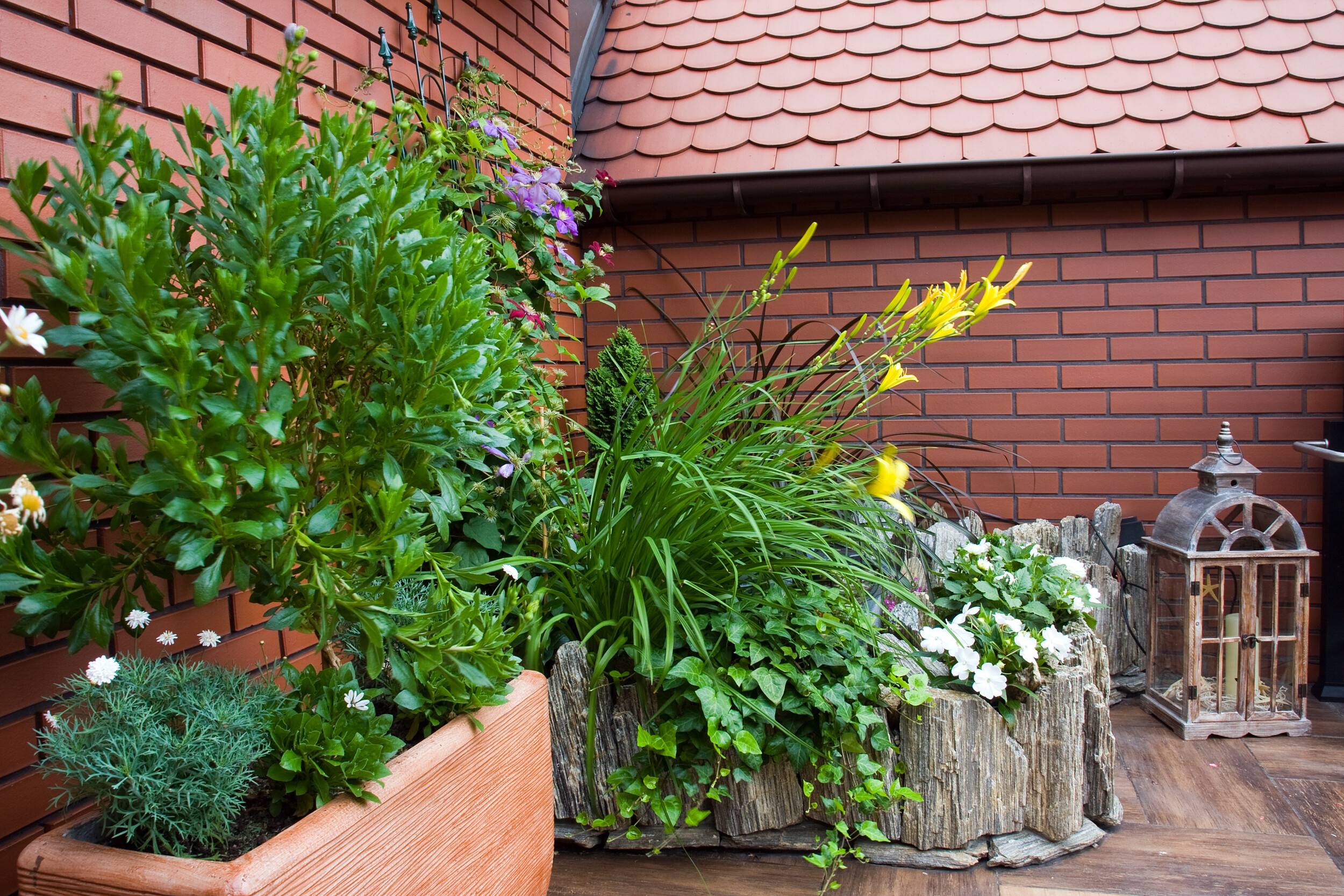 outdoor deck with potted plants