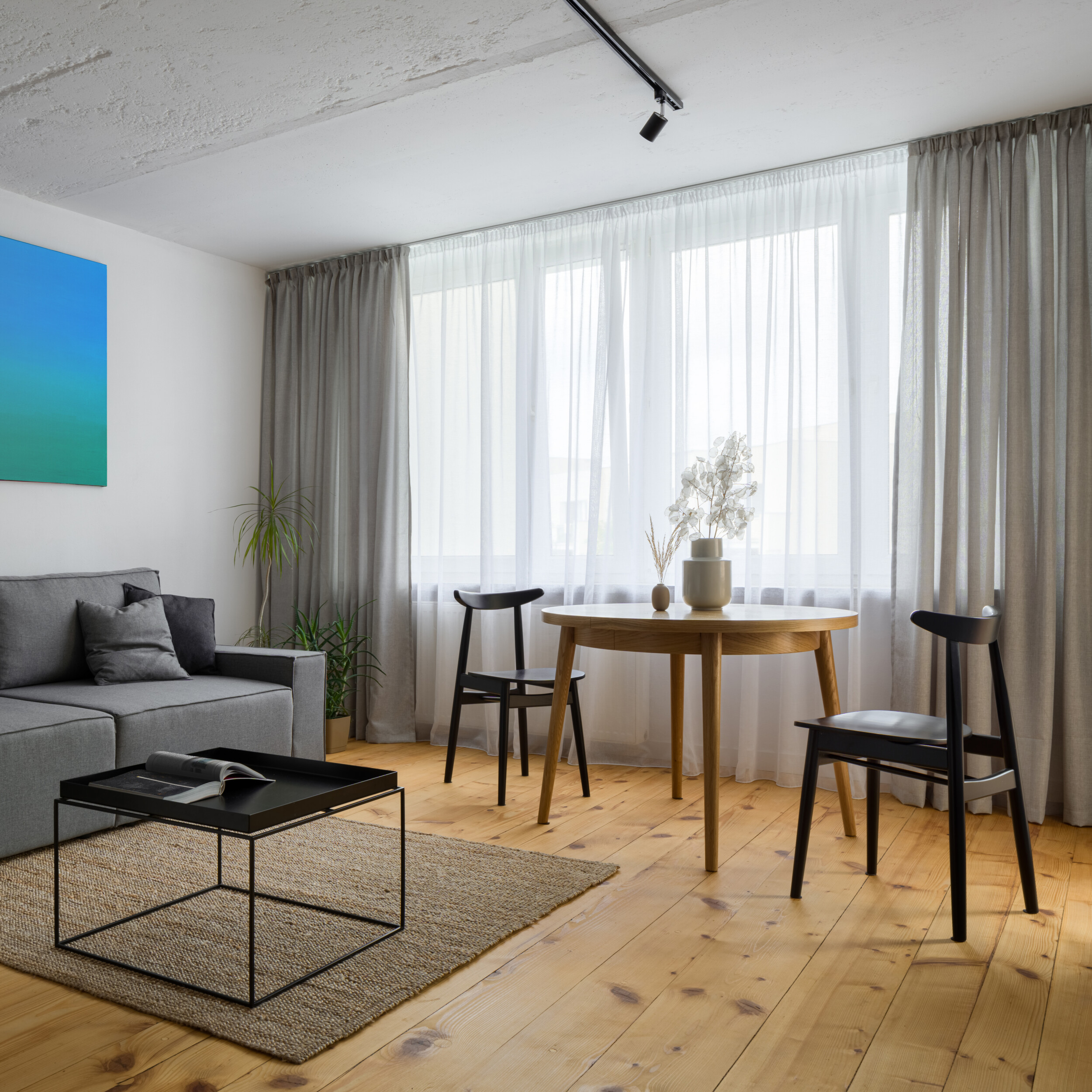 small transitional living room