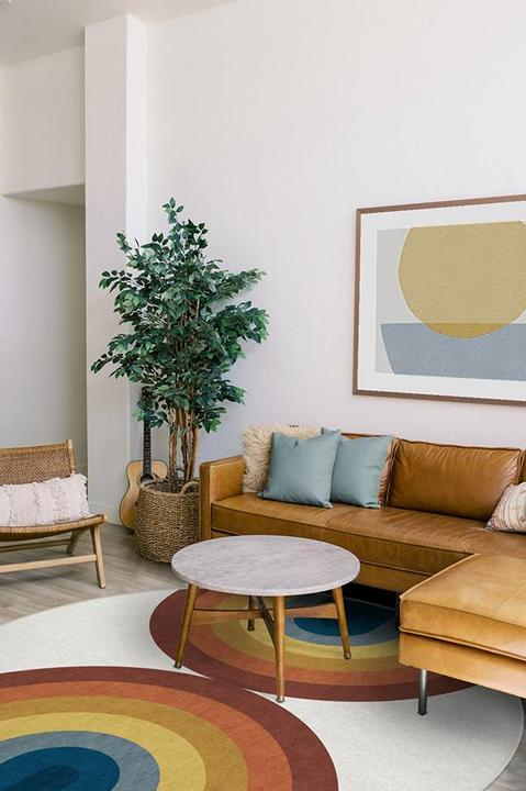 Mid Century Modern Style Living Room